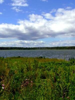 """То самое Озеро, широкое как его душа... (смотр. раздел """"Миронову посвящается..."""") (фото Самедова О.С.)"""