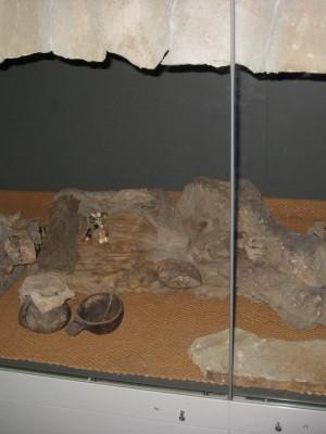 08.07.2009г., Санкт-Петербург. Эрмитаж. Тутанхамон, по-моему...